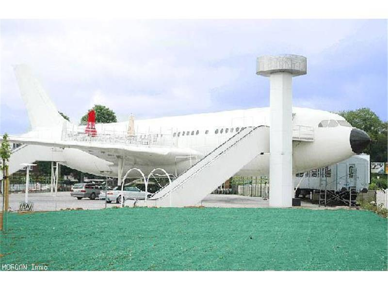 Striking a bargain ? An Airbus A310, located on a terrain