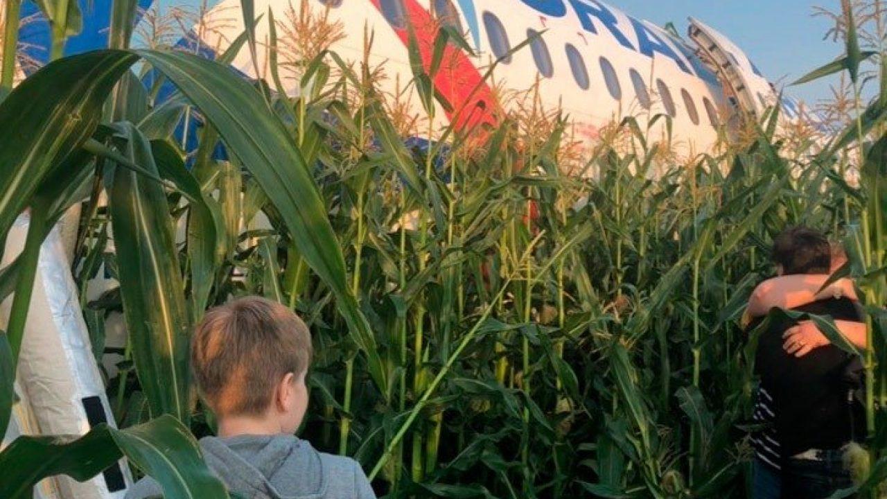 Resultado de imagen para A321 Ural Airlines accident