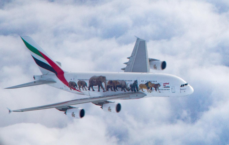 Airliners Illustrated®   Premium Airliner Art Prints